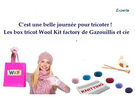 """""""C'est une belle saison pour tricoter"""" Box tricot Débutante"""