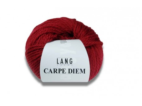 Carpe diem Lang Yarns